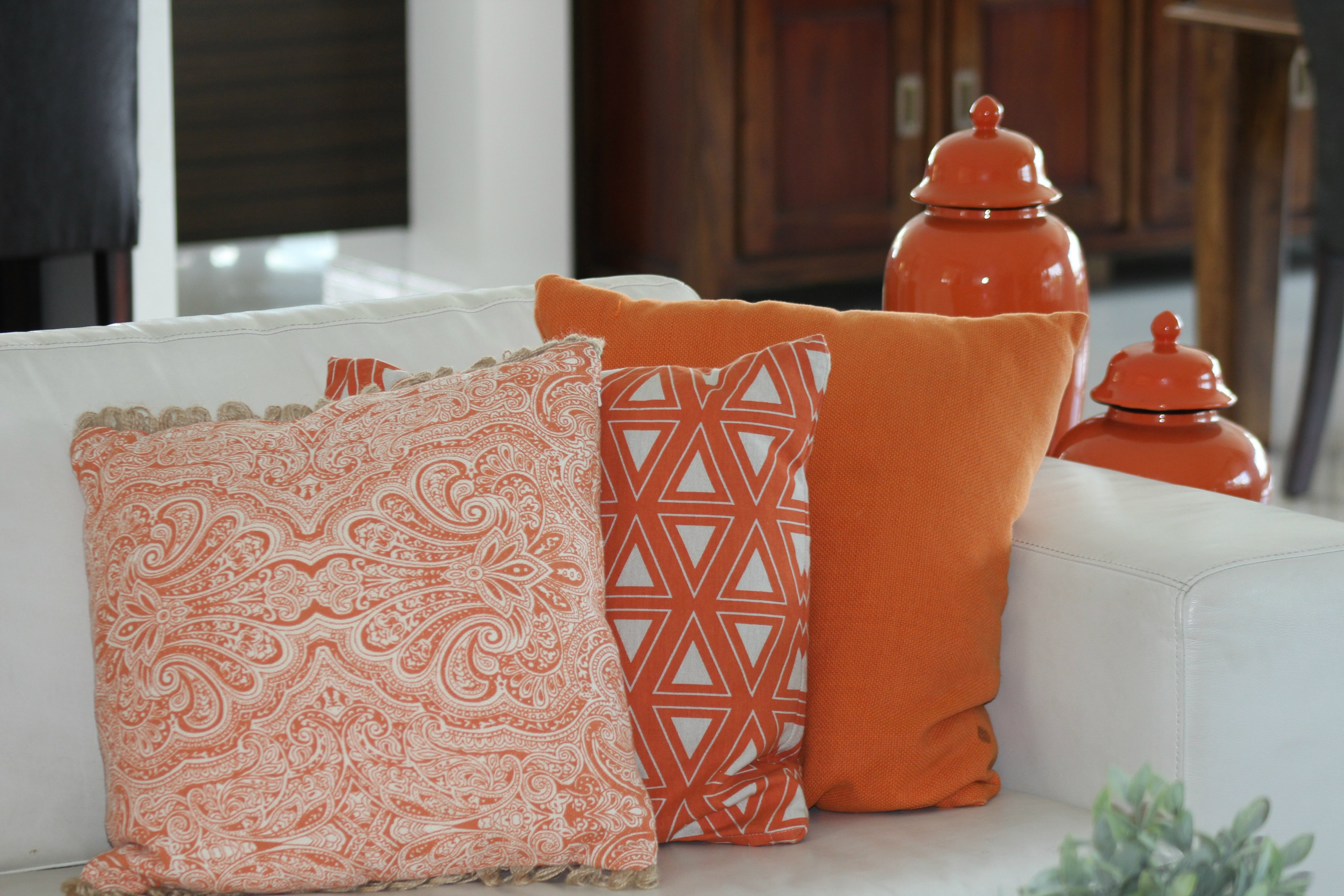 cushions smaller file.jpg